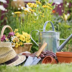 Весенние работы в саду и огороде