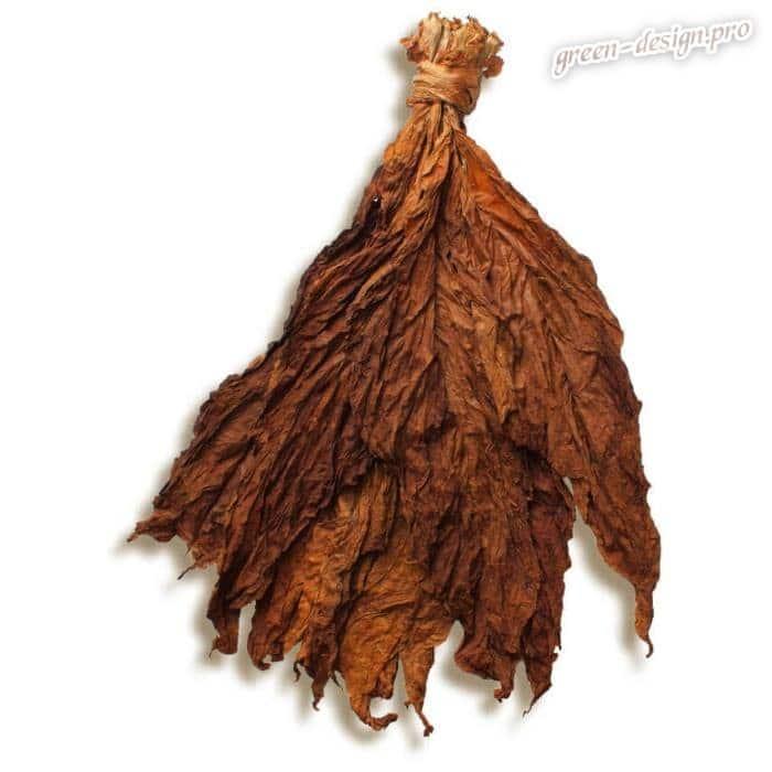 Табачные листья