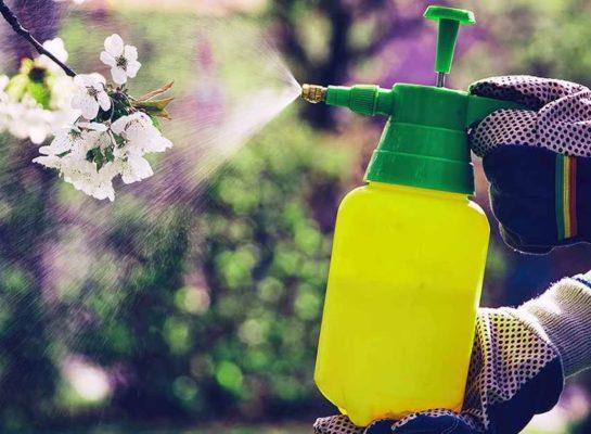 системные инсектициды для сада